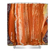 Campfire On A Snowy Night Shower Curtain