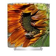 Orange Sunflower And Bee Shower Curtain
