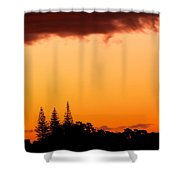 Orange Sunset And Silhouettes Of Norfolk Pines Shower Curtain