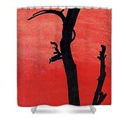 Orange Sunset Silhouette Tree Shower Curtain