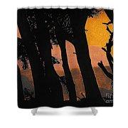 Orange Sunset Forest Shower Curtain