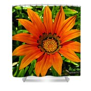 Orange Sunshine Shower Curtain