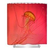 Orange Swimming Jellyfish Shower Curtain