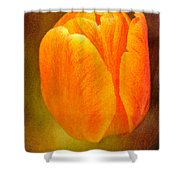 Orange Tulip Brown Texture Shower Curtain