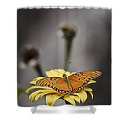 Orange Winged Butterfly Shower Curtain