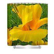 Orange Yellow Poppy Flower Art Print Shower Curtain
