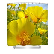 Orange Yellow Poppy Flowers Meadow Art Shower Curtain