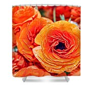 Orange You Happy Ranunculus Flowers By Diana Sainz Shower Curtain