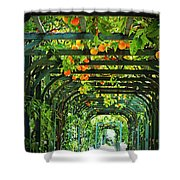 Oranges And Lemons On A Green Trellis Shower Curtain