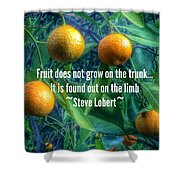 Oranges On A Limb Quote   Shower Curtain