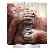 Orangrooming Shower Curtain