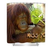 Orangutan Female Shower Curtain