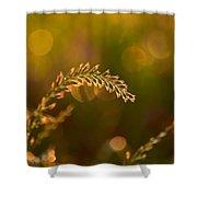 Orb Catcher Shower Curtain