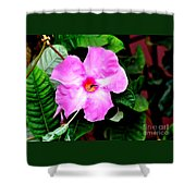 Orchard Colored Mandevilla Shower Curtain