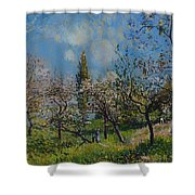Orchard In Spring Shower Curtain