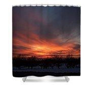 Orchard Sunset Shower Curtain