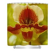 Orchid 124 Shower Curtain