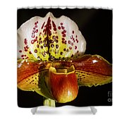 Orchid 130 Shower Curtain