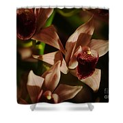Orchid 137 Shower Curtain