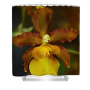 Orchid 140 Shower Curtain