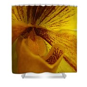Orchid 142 Shower Curtain