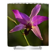 Orchid 149 Shower Curtain