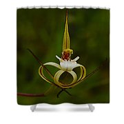 Orchid 26 Shower Curtain