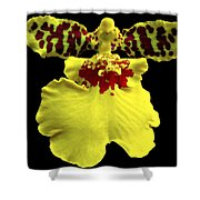 Orchid 33 Shower Curtain