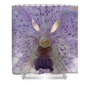 Orchid 76 Shower Curtain