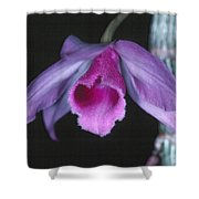 Orchid 9 Shower Curtain