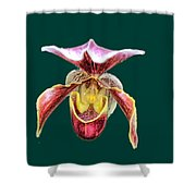 Orchid Alone Shower Curtain