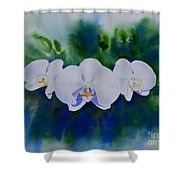 Orchid Blast Shower Curtain