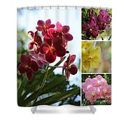 Orchid Collage Shower Curtain