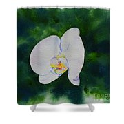Orchid Dance 1 Shower Curtain