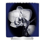Orchid Elegance 2 Shower Curtain