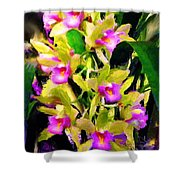 Orchid Flower Bunch Shower Curtain