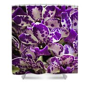 Orchid Grouping Shower Curtain