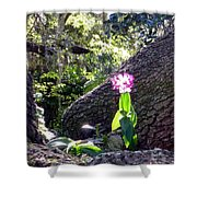 Orchid In Tree 2 Shower Curtain