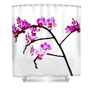 Orchid In White  Shower Curtain