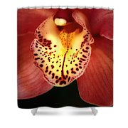 Orchid Macro Shower Curtain