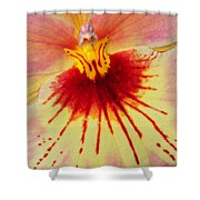 Orchid Of Color Shower Curtain