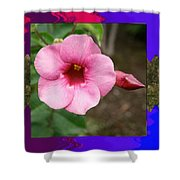 Orchid Pink Flower Photographed At Costa Rica Sensual Smile Graphic Dital Painted Background Ideal Shower Curtain