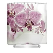 Orchid Pink Vintage Shower Curtain