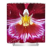 Orchid Pink Yellow White Shower Curtain