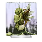 Orchid Pixie Shower Curtain