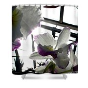 Orchid Series 4 Shower Curtain