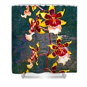 Orchid Spray By Pottery  Shower Curtain