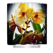 Orchid Vignette Shower Curtain
