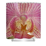 Orchid You Happy Shower Curtain