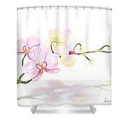 Orchidea Shower Curtain